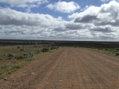another green valley in the outback