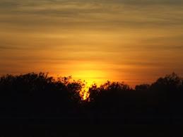 Adelaide river sunrise