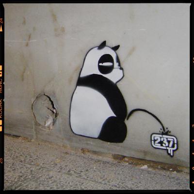 graffiti oso meando