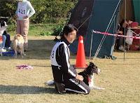 http://border-polly.blogspot.jp/2008/12/2.html
