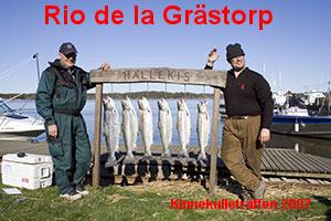 Rio de la Grästorp