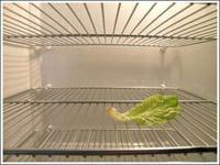 Торговые холодильники, продажа холодильников.ФОТО