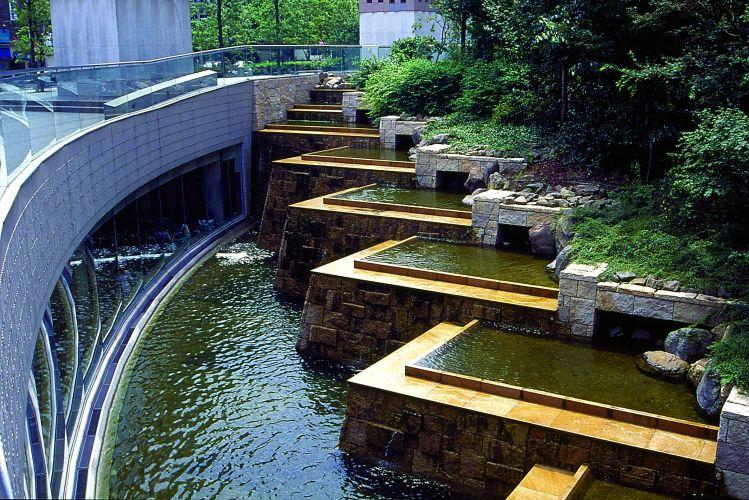 plantas jardim japones:SÍTIO MARAVILHA: Livro conta história e mostra os diferentes tipos