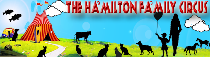 Hamilton Family Circus