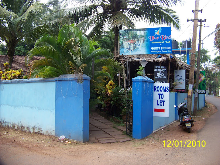 Blue Bird Guest House Vagator The Blue Bird Guest House In Goa