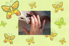 Mariposas que se dejan acariciar por mis hijos y por mí