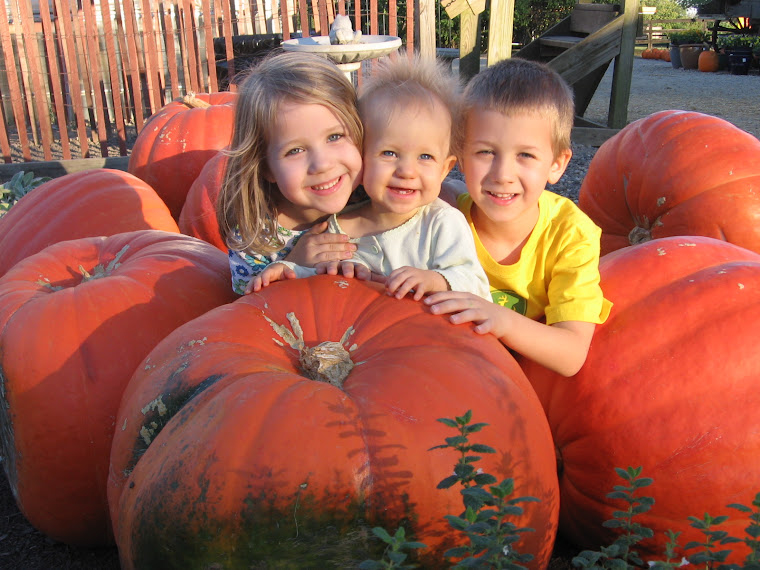 My Sweet Pumpkins
