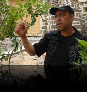 Norberto Tavares needs Help!