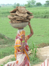 Lady Selling Dried Cow Dung