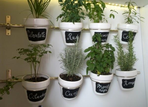 Almacen verde plantas arom ticas en la cocina - Plantas aromaticas en la cocina ...
