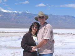 At the Salt Fields