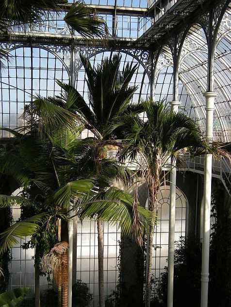 Les Haricots Verts Royal Botanic Garden Edinburgh