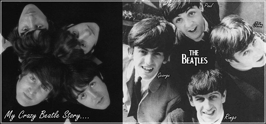 My Crazy Beatle Story,♥