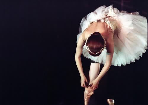 black swan 15