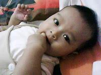 penglihatan bayi