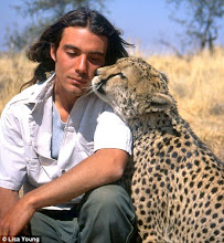 Olivier Houalet & The Cheetah