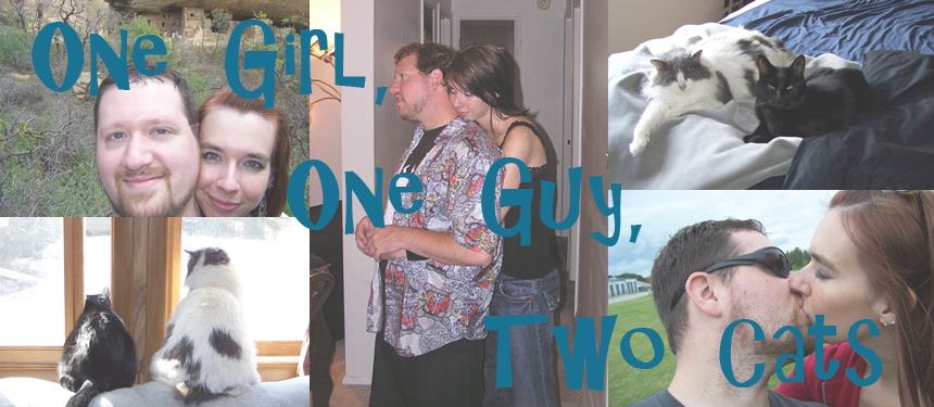 One Girl, One Guy, Two Cats