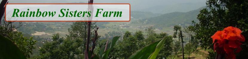 Rainbow Sisters Farm: Organic farm in Kathmandu valley:)