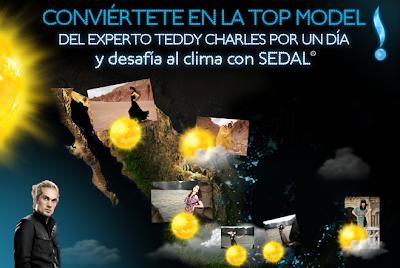 premios promocion sedal mexico 2011
