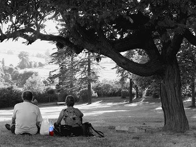 pidic encadrees photographie photoblog amateur bordeaux gironde rose amoureux vin arbre pique-nique