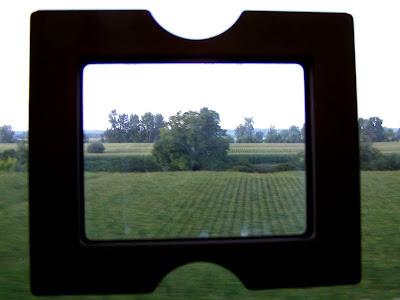 pidic encadrees bordeaux gironde train serie voyage photo photographie amateur arbre