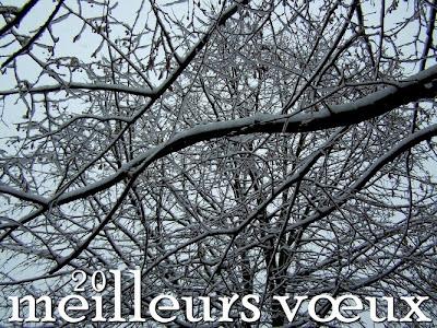 pidic neige encadrees bordeaux carte voeux vœux 2011 bonne annee