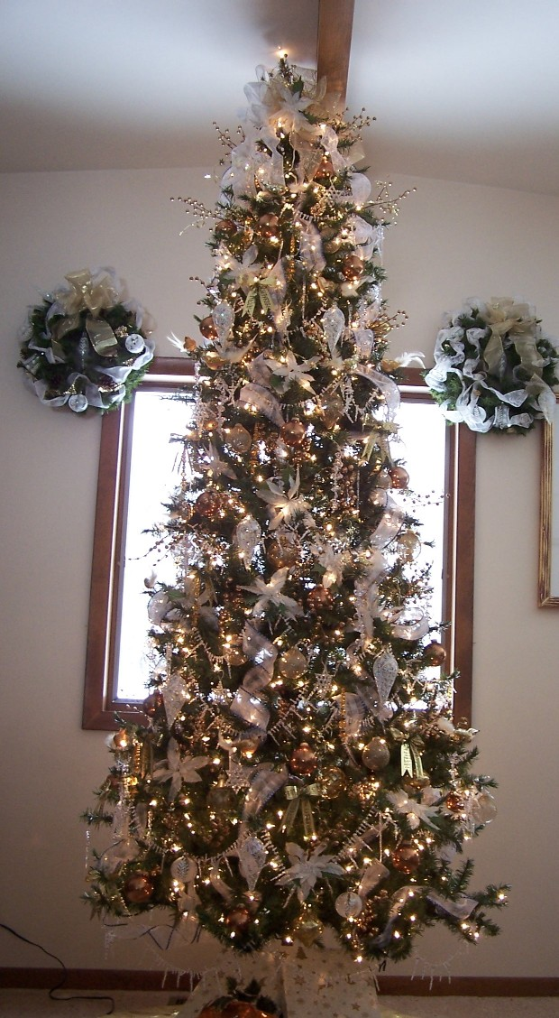 perennial passion christmas trees from 2003 to 2010. Black Bedroom Furniture Sets. Home Design Ideas