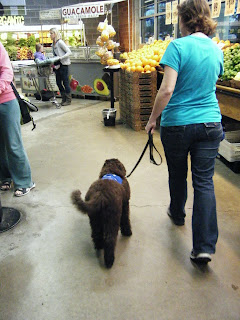 Alfie & me walking past displays of produce