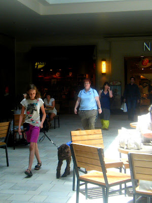 Katharine's walking Alfie through a cafe area in the mall, followed by Michelle; he's looking around curiously