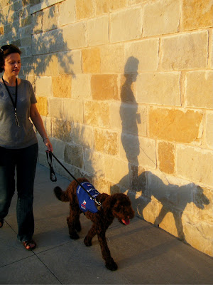 Alfie & I walking together; the setting sun casts our shadow on a limestone wall behind us