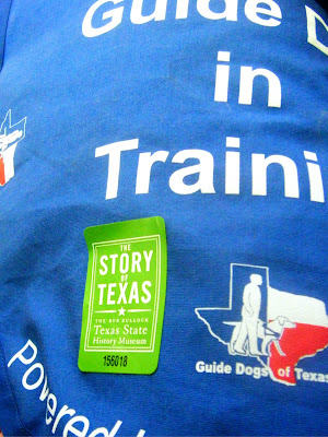 closeup of Alfie's blue jacket with a green sticker on it that says:  The Story of Texas/Texas State History Museum