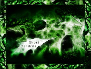Fallen (Ghost Green) (c) Copyright 2009 Christopher V. DeRobertis. All rights reserved. insilentpassage.com