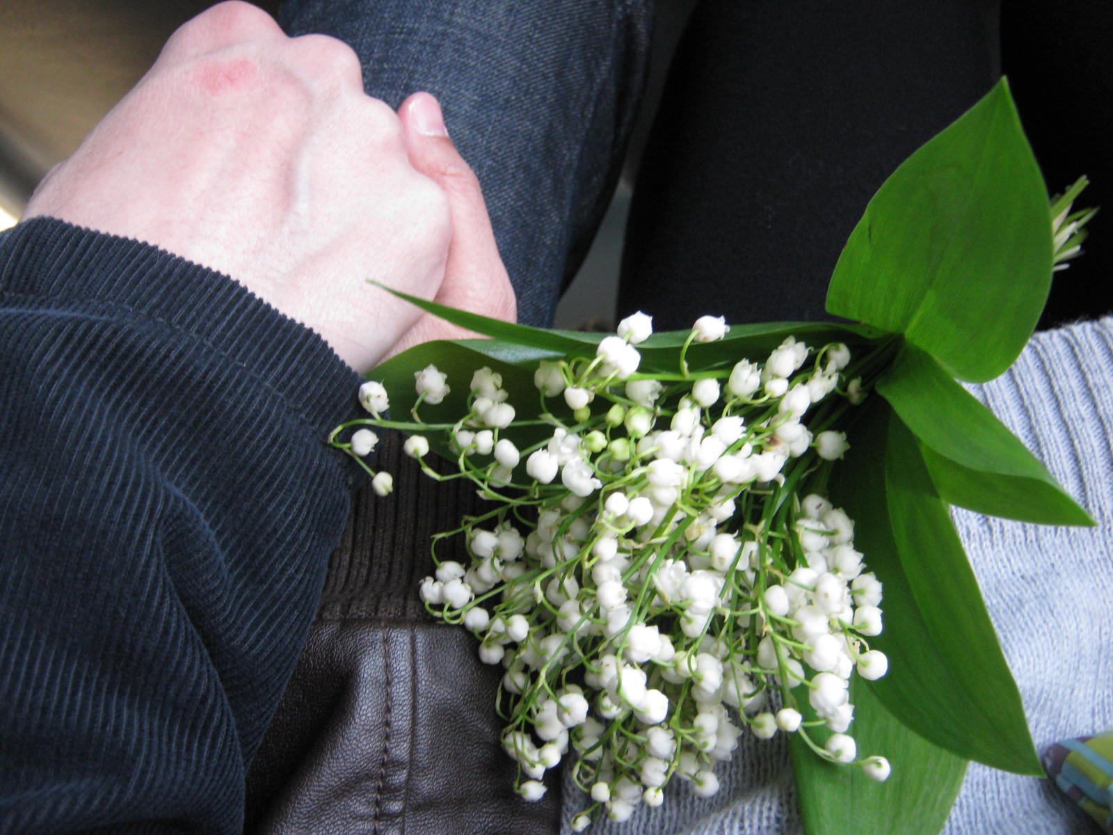 living in russia lily of the valley return of holding a bouquet or two of lily of the valley is a common sight on russian streets in may day before long it will disappear from the streets as soon as izmirmasajfo