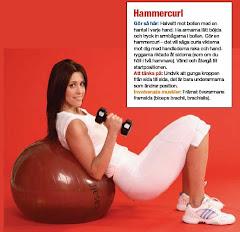 Fitness Magazine, armövningsprogram