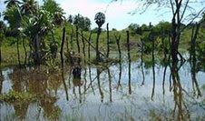 Piden suspender trabajos de cementera en los Haitises