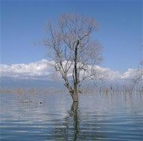 Lago Enriquillo amenaza vidas  en provincias  Sur