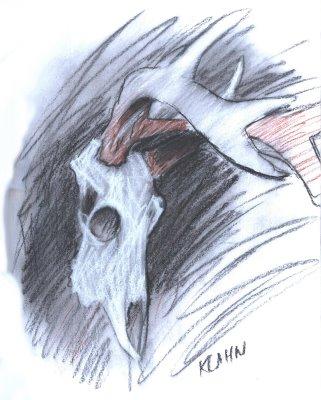 Whitetail+deer+skull+drawings