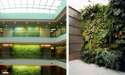 mendoza decora un jardin vertical en mendoza