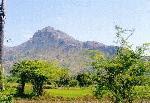 Ramboarun Darshan
