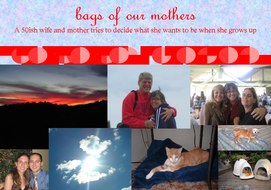 Bags of Our Mothers