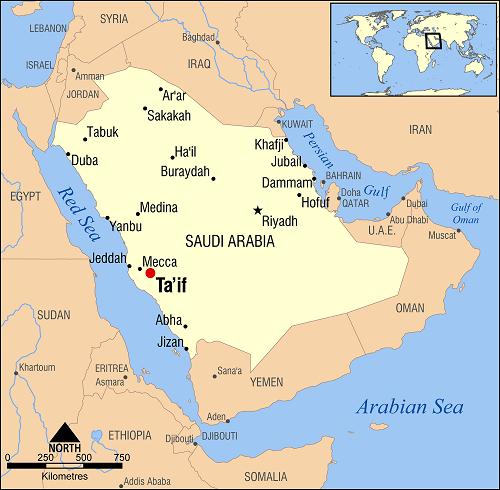 taif saudi arabia Latitude longitude of taif, mecca, saudi arabia coordinates are given in both decimal degrees and dms format, see where taif, mecca, saudi arabia is located on map and its elevation.