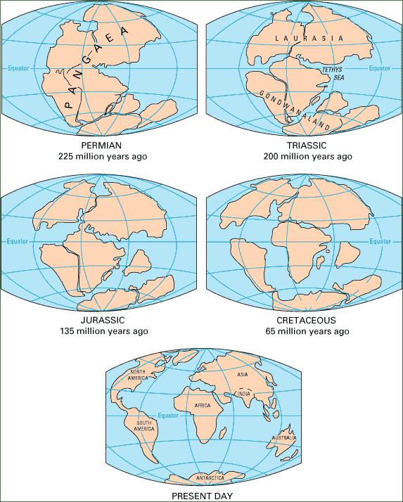 Story Plate Tectonics Theory of Plate Tectonics