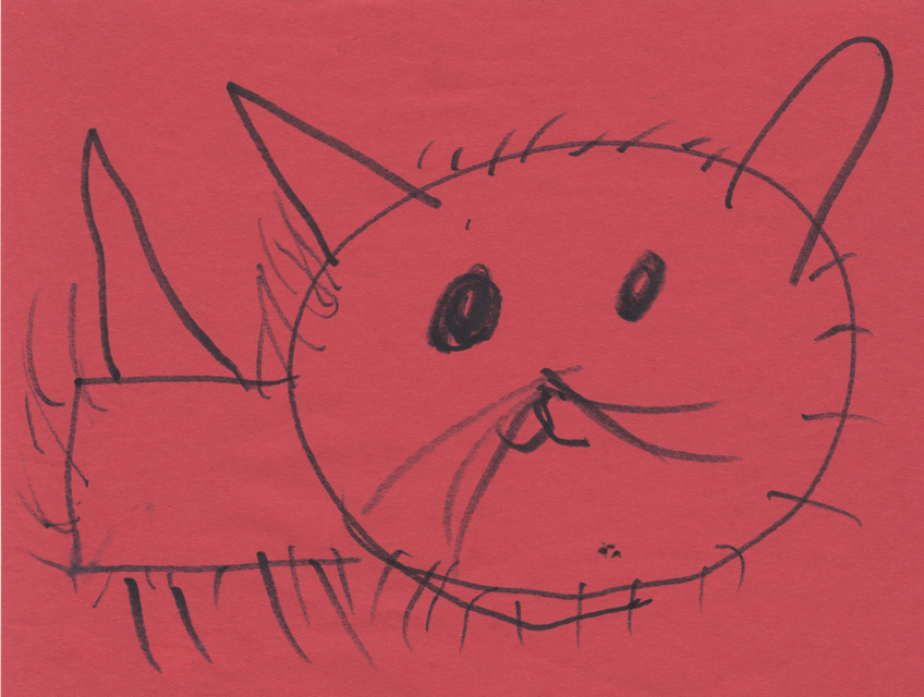 Pink Kitten Drawing Here is Rosie's Cat Drawing