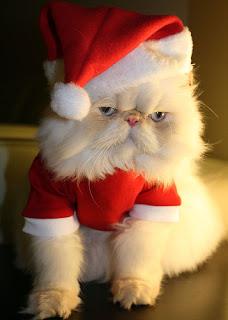 weird santa-3