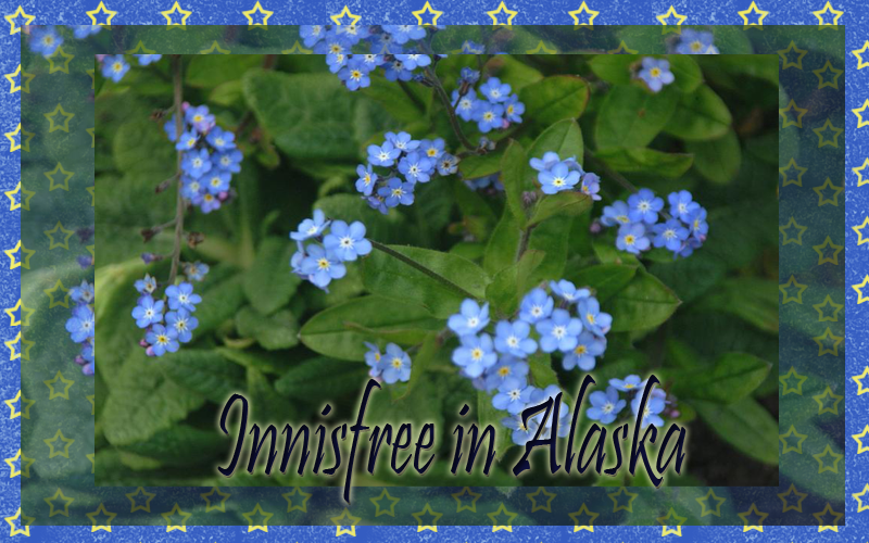 Innisfree In Alaska