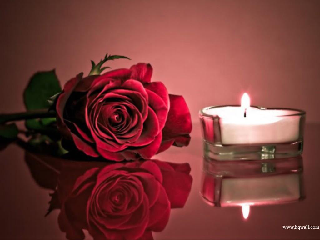 Flower_887072-751233.jpg