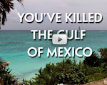 YOU&#39;VE KILLED THE GULF OF MEXICO (VIDEO)