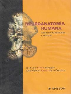 neuroanato