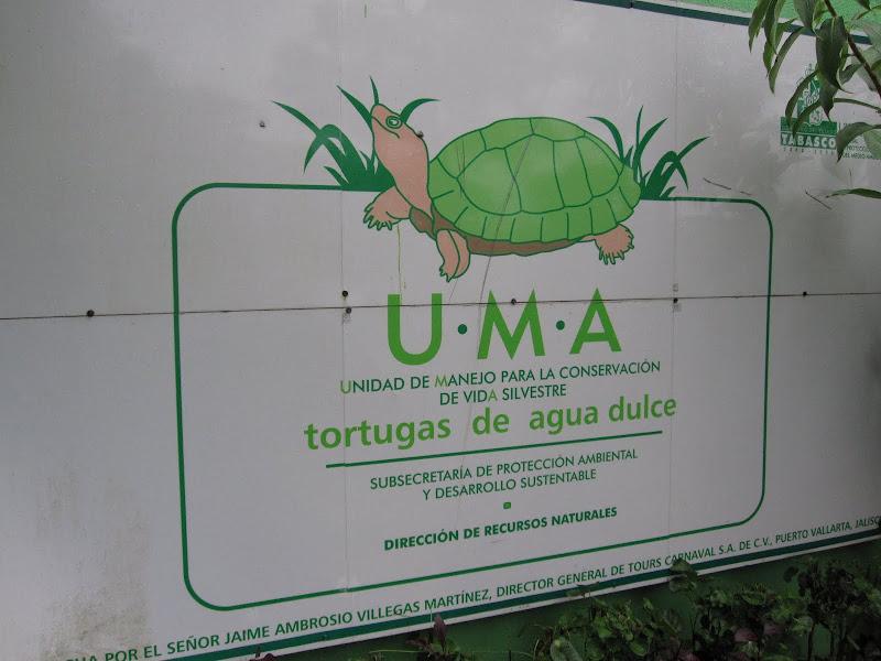 Granja de Tortugas (Turtle Farm) title=