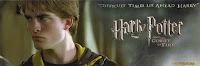 harry potter cedric diggory